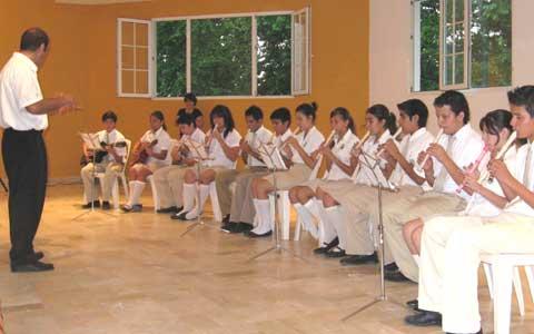 web-orquesta-flautas-guitar
