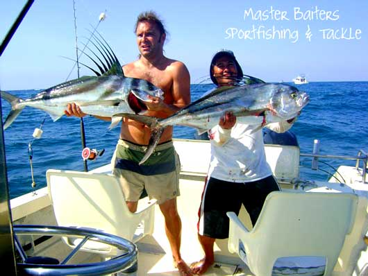 Rooster Fish and Dorado at the points, Marlin & Yellowfin Tuna Thinning Out