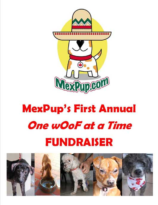 one woof at a time benefit