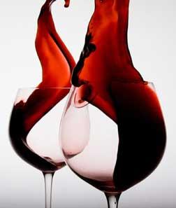 Vallarta Wine Festival