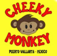 cheeky monkey in puerto vallarta