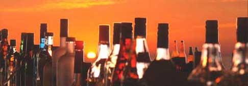Bar Guide bottles in the sunset